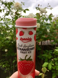 East Anglian Strawberry Fruit Ice tube with product
